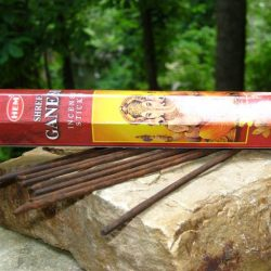 HEM INCENSE HEX PACK 20 STICKS - SHREE GANESH