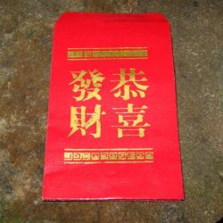 CHINESE RED ENVELOPES - SET OF 20